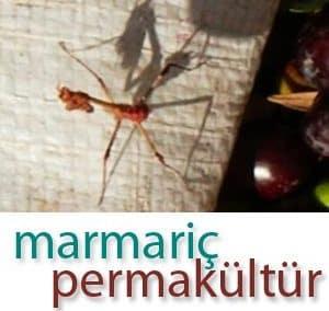 Marmariç Ekolojik Yaşamı Destekleme Derneği
