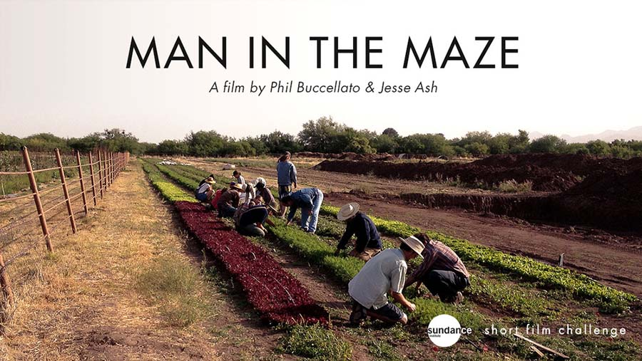 Labirentteki İnsanlık / Man In The Maze