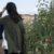 Melike Muezzinoglu kullanıcısının profil fotoğrafı